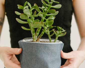 Chambray Planter - Fabric Covered Pot - Plant Lover Gift
