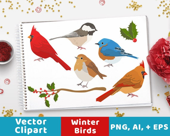 Winter Birds Clipart Christmas Holiday Animal Cardinal Rustic Vectors From