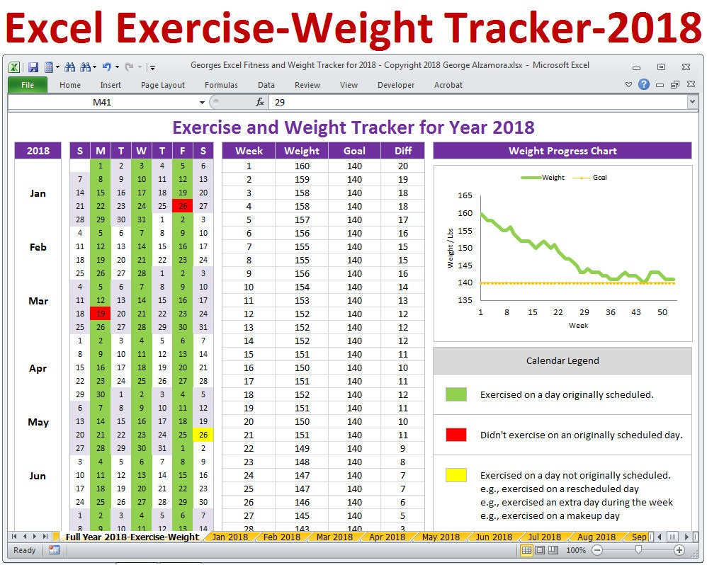 2018 fitness and weight tracker in excel year 2018 daily description fitness planner and weight tracker spreadsheet alramifo Images