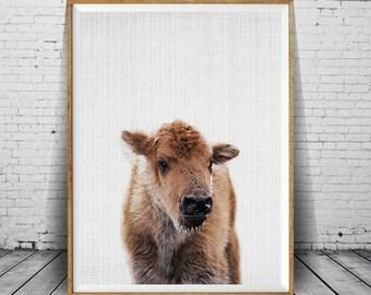 Baby Buffalo Print, Bison Print, Large Wall Art Print, Animal Prints, Animal Poster Art, Living Room Art, Farmhouse Decor, Buffalo Art Photo