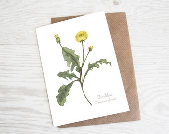 Dandelion, A6 Botanical Wildflower Greeting Card