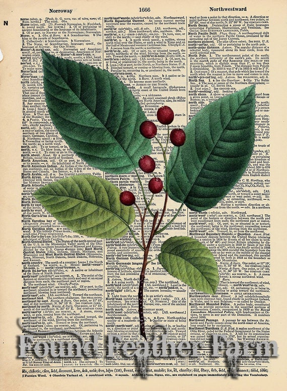 """Vintage Antique Dictionary Page with Antique Print """"June Berry Leaves"""""""
