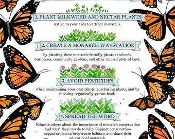"16x20"" Four Things You Can Do To Help the Monarchs Poster/ butterfly preservation / environmental / nature awareness"