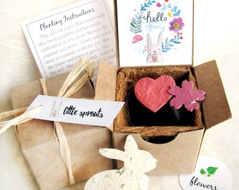 4 Hello Spring Seed Planting Gift Box Kit - Plantable Seed Paper Easter Bunny and Flowers - Peter Rabbit Birthday and Baby Shower Favors