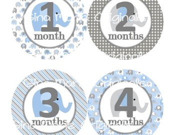 Baby Monthly Milestone Growth Stickers Grey and Blue Elephant Nursery Theme MS244 Baby Shower Gift Baby Photo Prop