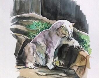 Original Polar Bear Painting - 11x14 Watercolor