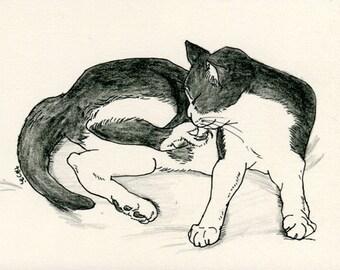 Cat original drawing - P016November2015