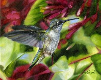 Hummingbird, fine art paper print