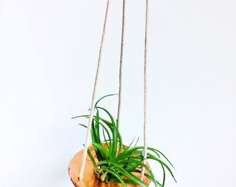 COPPER HANGING PLANTER // Air Plant Planter, Polymer Clay Planter, gifts for her