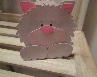 Kitten Favor Box Set of 12 withFree Shipping