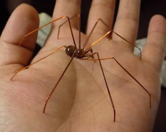 patona spider, spider wire, Tiger's eye
