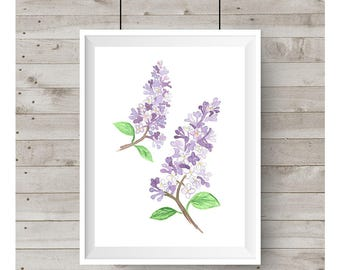 Lilac Watercolor