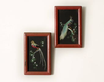 Vintage Exotic Birds with Feathers Original Framed Oil Painting - Set of 2