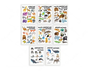Set of 8th graphics with animals from all over the world. Educational collection.