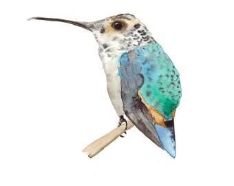 Hummingbird Print, Tiny Bird Watercolor, Colourful Bird Art, Hummingbird Wall Art Reproduction