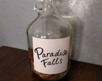 "Paradise Falls ""UP"" glass gallon jar with lid"