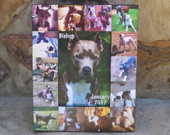 """Pet Memorial Picture Frame, Pet Collage Photo Frame, Custom Cat Frame, Personalized Dog Frame, Unique Pet Collage Picture Frame, 5"""" x 7"""""""