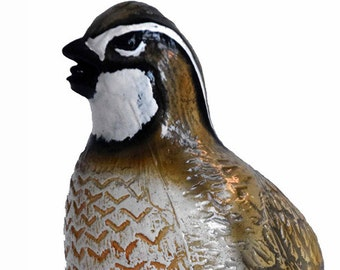 Quail Bottle Opener From Foxhall Ltd Game Bird Collection