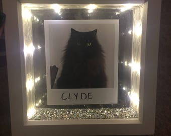 Personalised Pet Light Up Shadow Box