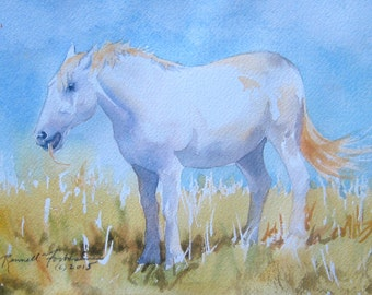 White Horse Original Watercolor White horse in landscape Watercolour Irish Horse Small Landscape Painting Ireland Yellow Violet Blue colors