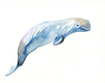 BELUGA WHALE-7x5inch Print-Art Print-animal Watercolor Print-Giclee Print-home decor-nursery decor-sea art
