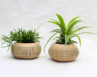 Ceramic Planter with Crackles - Succulent Cactus Planter- Handmade Stoneware - Ready To Ship