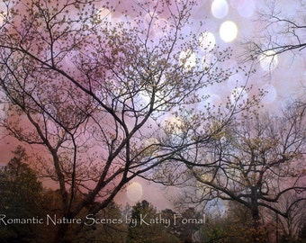 Nature Photography, Fantasy Trees Nature Photos, Fairytale Nature Purple Trees, Purple Lavender Nature Trees Bokeh, Fantasy Nature Photos