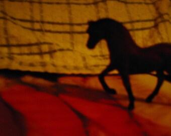 Show Horse - Print