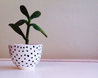 mini ceramic plant pot