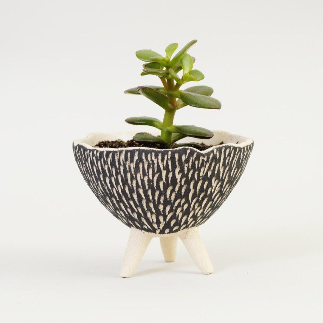 🔎zoom. black and white pottery planter ceramic planter modern