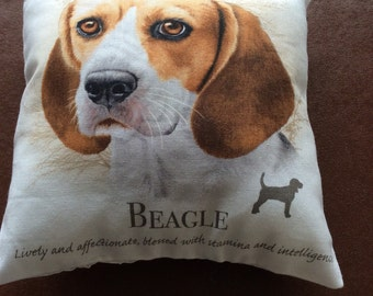 Beagle mini cushion