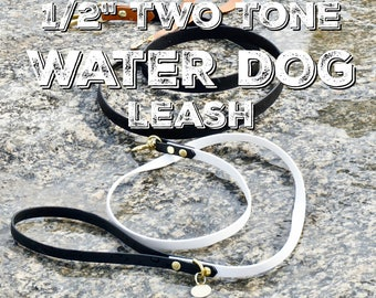 """SMALL 1/2"""" TWO TONE - Water Dog Leash, Vegan leather, Biothane Webbing, Water proof leash, all weather lead"""