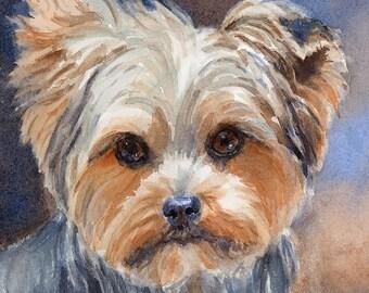 yorkshire terrier dog painting dog portrait dog art. Black Bedroom Furniture Sets. Home Design Ideas