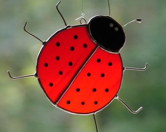 Ladybug Ladybug Fly Away Home