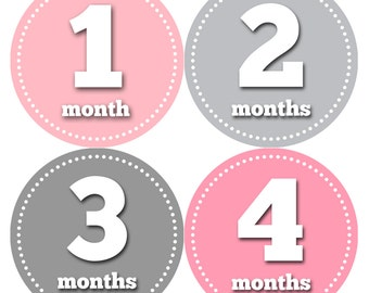 Baby Girl Month Stickers Monthly Baby Sticker Monthly Baby Stickers Baby Month Stickers Milestone Stickers Photo Stickers 046