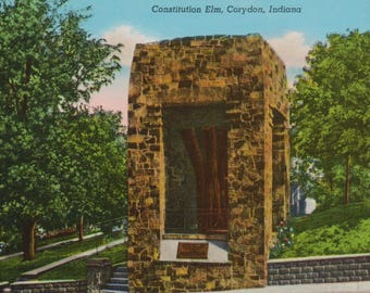 Antique Linen Postcard of the Constitution Elm in Corydon Indiana, Indiana's First State Capital Postcard, Historical Postcard, Ephemera