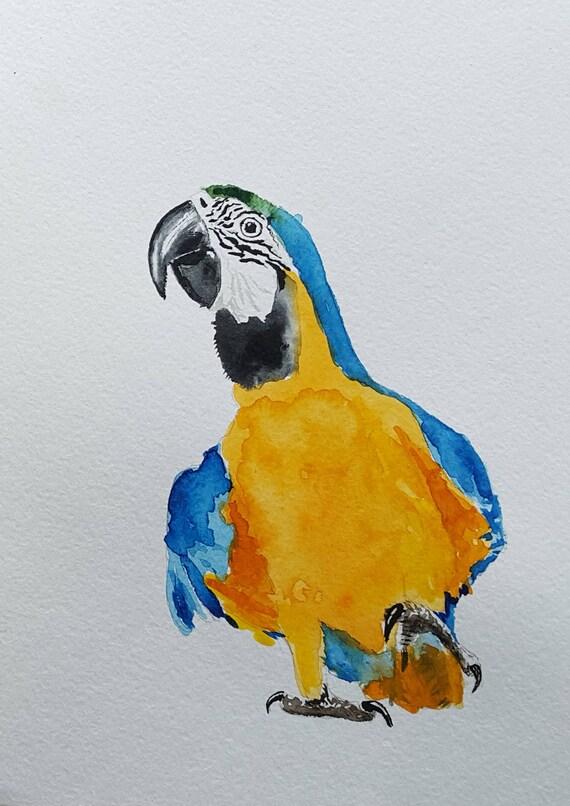 PARROT PAINTING parrot artwork macaw art watercolor bird