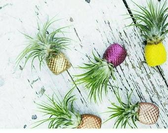 1 Pineapple Magnet/Air Plant magnet/Pineapple decor/Air Plant Holder/Air Planter/Concrete Planter/Bridesmaid Gift/Pineapple/Office Planter