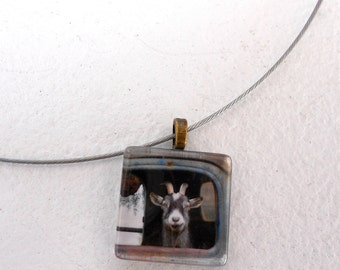 Truck Driving Goat Pendant Necklace