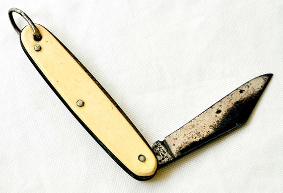 """Vintage HAMMER BRAND Pocket Folding Knife Watch Fob Single Blade 2 1/4"""" L Closed Ivory Colored Scales Excellent Condition."""