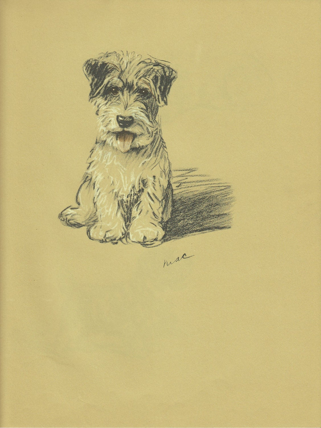 TERRIER Dog Print 1930s Lucy Dawson Dogs Wall Art Puppy