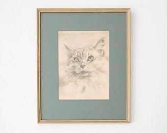 Vintage Cat Drawing