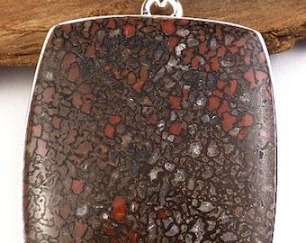 Dinosaur fossil jewelry, fossil pendant, natural gemstone jewelry, bone minerals BEE34.1