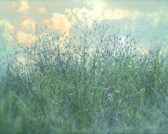 """Country Field Photo, Wildflowers, Nature Landscape, Purple Flower Print, Rural Summer, Farmhouse Art, Home and Garden- """"Field of Dreams"""""""