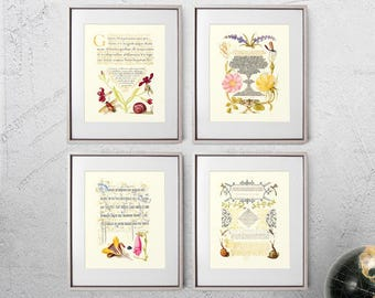 Typography Prints, Naturalist Decor, Antique Wall Art, Rustic Botany Poster, Florals Wall Art, Botany Sister Gift - E22_Set41