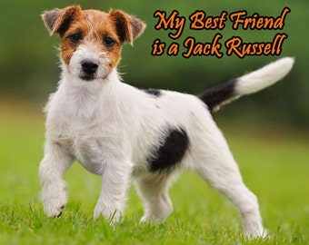 My Best Friend is a Jack Russell Terrier Fridge Magnet 7cm by 4.5cm