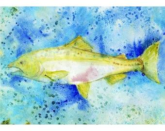 Salmon Painting, fish Painting, watercolor fish, 8 x 10 Giclee Print, wildlife art, abstract painting, Fish art, salmon watercolor,