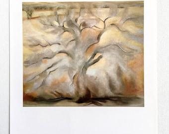 Georgia O'Keeffe / Winter Trees, Abiquiu / 1950 / Art / Book Page Print / Published 1990's