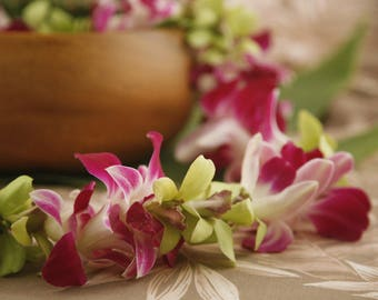 """Fresh Flower Lei """"Mixed Orchid Jade"""" - Choose Your Delivery Date! - Fresh Flowers from Hawaii - Hawaiian Lei Orchid Graduation Flowers"""