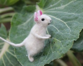 Needle felted  mouse, white mouse,  Miniature soft sculpture